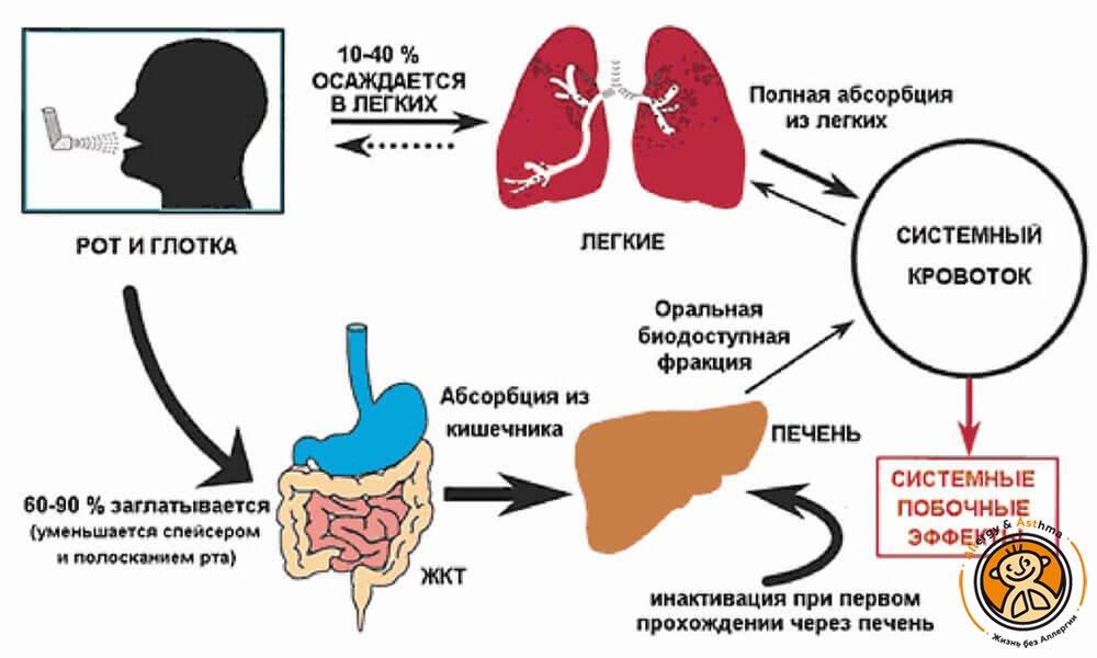 Побочные эффекты глюкокортикостероидов