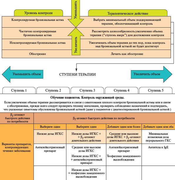 бронхиальная гиперреактивность