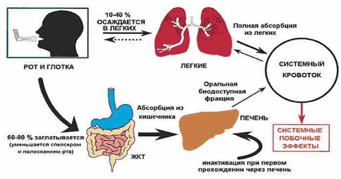 Безопасность ингаляционных глюкокортикостероидов