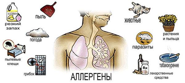 астма без лекарств