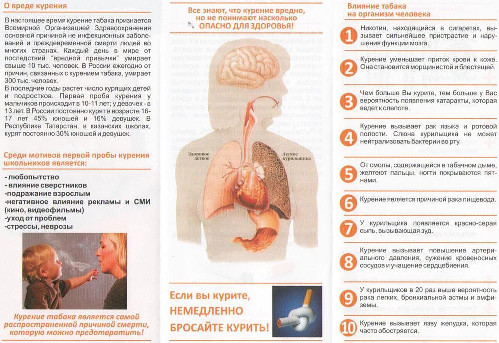 Табакокурение и его влияние на здоровье человека