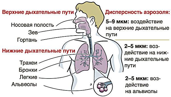 ингалятор от бронхиальной астмы