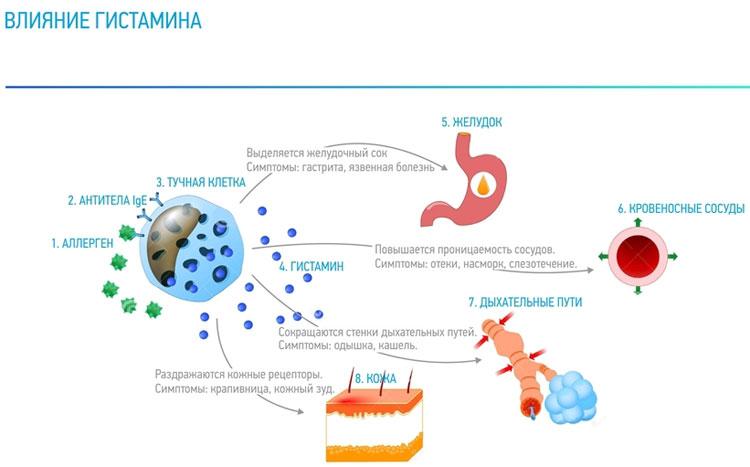 пыльцевая бронхиальная астма