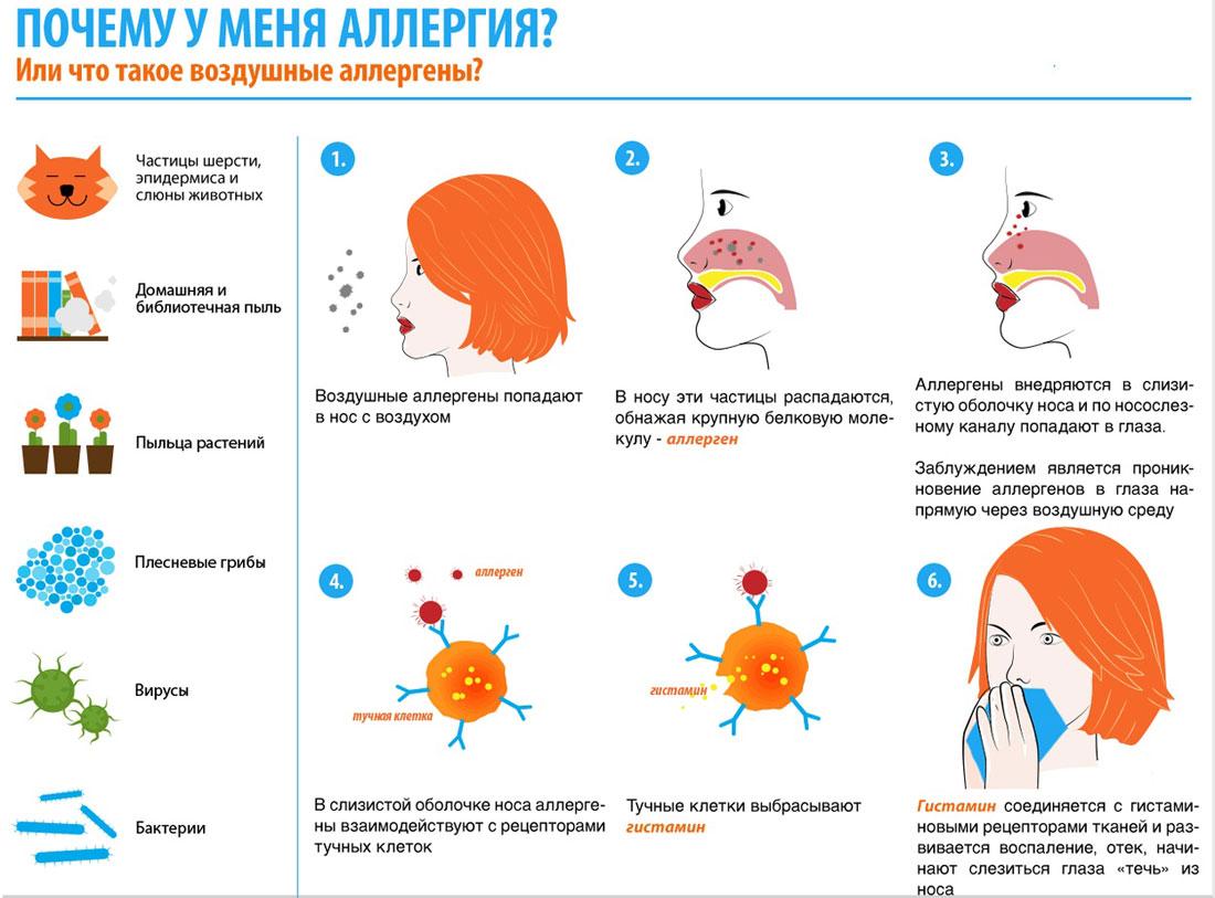 Аллергия - не отдельная болезнь, а системное нарушение