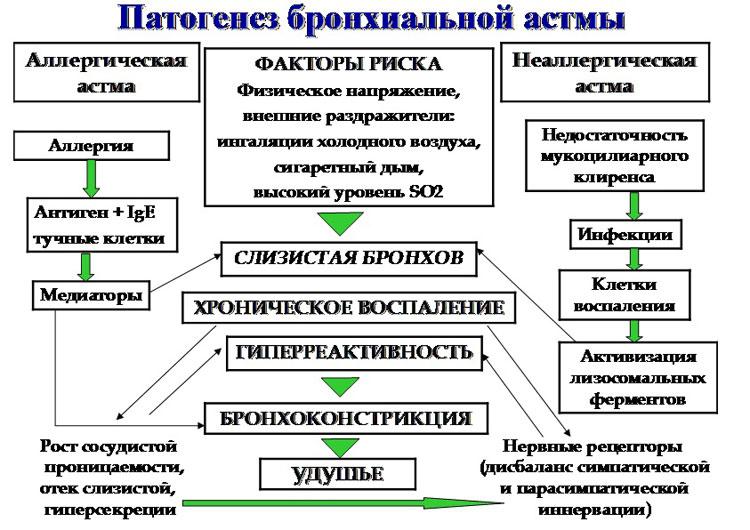 ингалятор асманекс