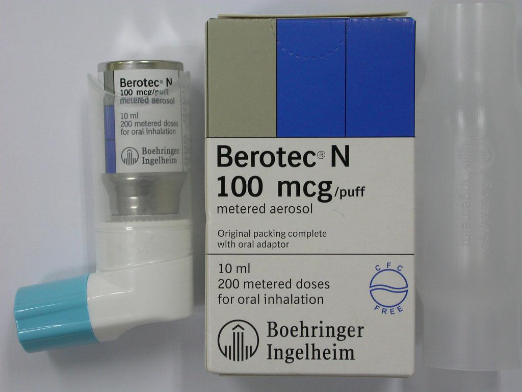 Беротек-Н