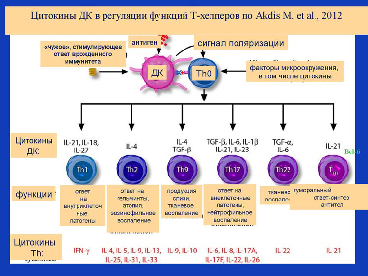 коронавирусы при астме